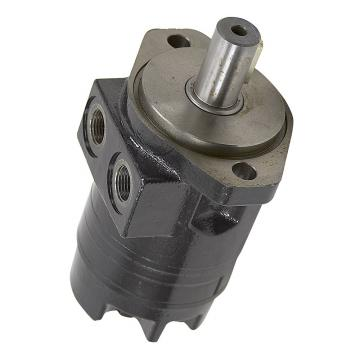 Case PU15V00021F1 Hydraulic Final Drive Motor