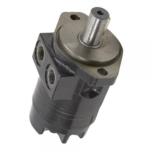Case PU15V00021F1 Hydraulic Final Drive Motor #3 image