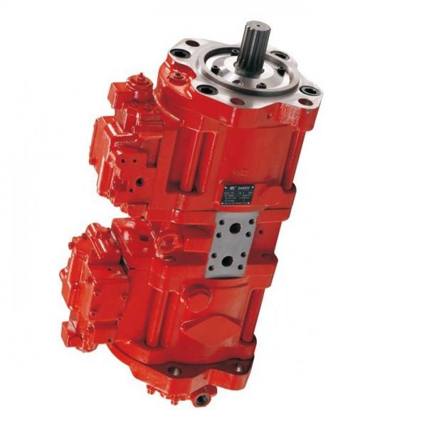 Case KBA10060 Hydraulic Final Drive Motor #1 image