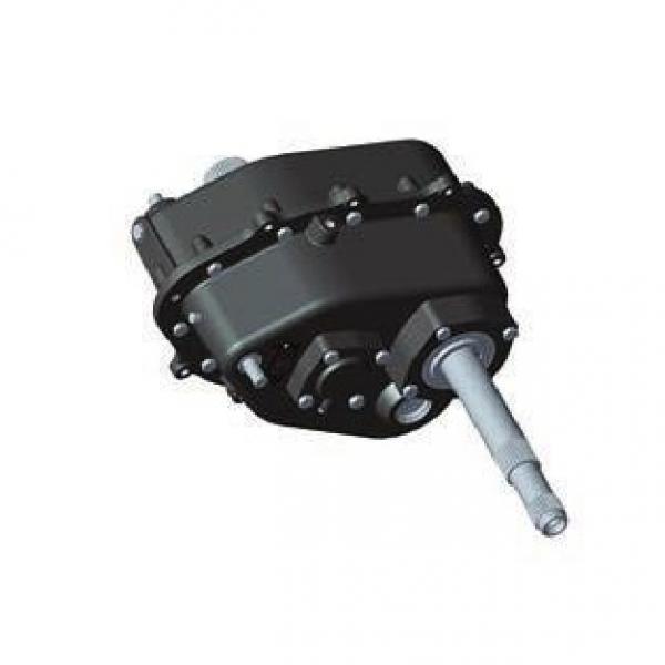 Gleaner 71412497 Reman Hydraulic Final Drive Motor #2 image