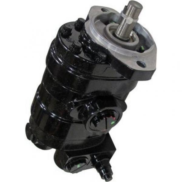 Gleaner R76 Reman Hydraulic Final Drive Motor #1 image