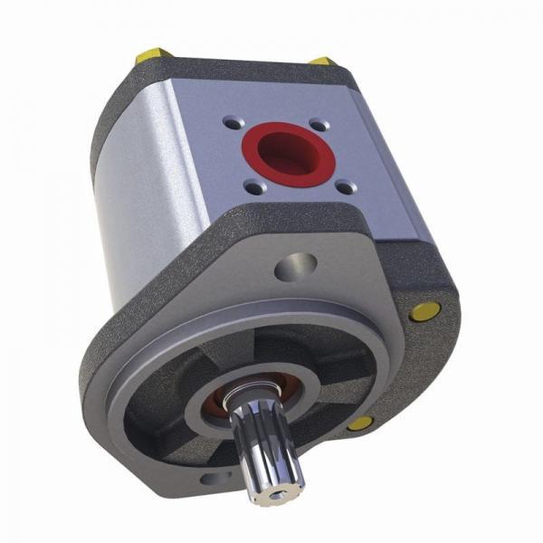 Massey-Ferguson 9550 Reman Hydraulic Final Drive Motor #1 image